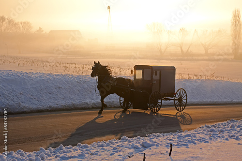 Amish Carriage in Fog