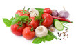 Vegetables for salad with pepper,  tomatoes, basil and cucumber