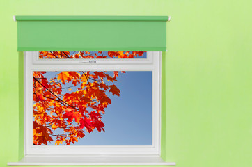 View autumn leaves and blue sky from window