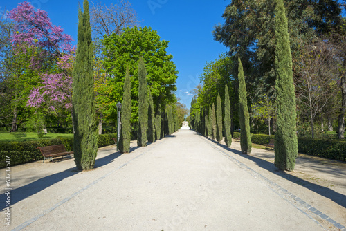 Retiro Park in Madrid in spring