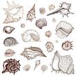 Sea collection. Hand drawn vector illustration - 63739139