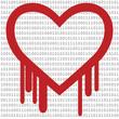 Heartbleed with Binary Code