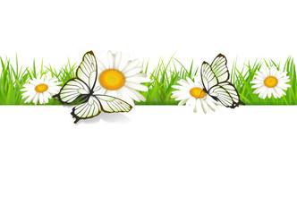Karte mit Wiese und Schmetterlingen