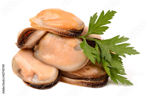 mussels on a white background