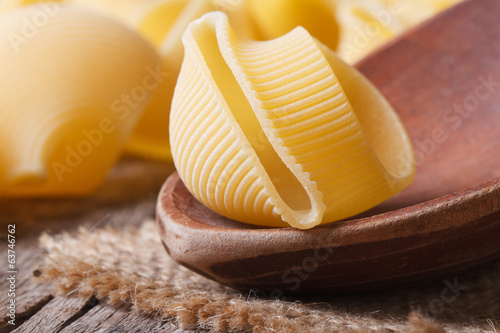 Raw Italian pasta lumaconi on a wooden spoon