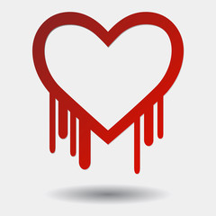Heartbleed with Shadow