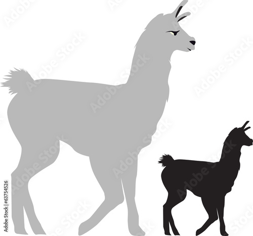illustration of a llama side view