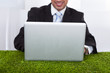 Businessman Using Laptop On Grass In Office