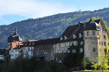 Altstadt Bregenz mit pfaender