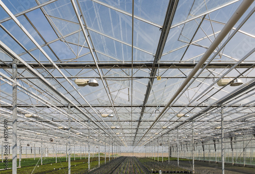Glass roof of a big Dutch greenhouse