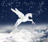 unicorn in the sky