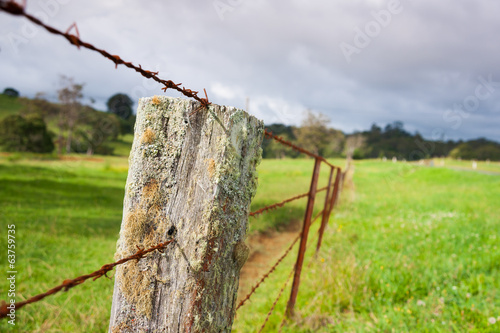 Rusty barbed wire fence, lichen covered fence post.