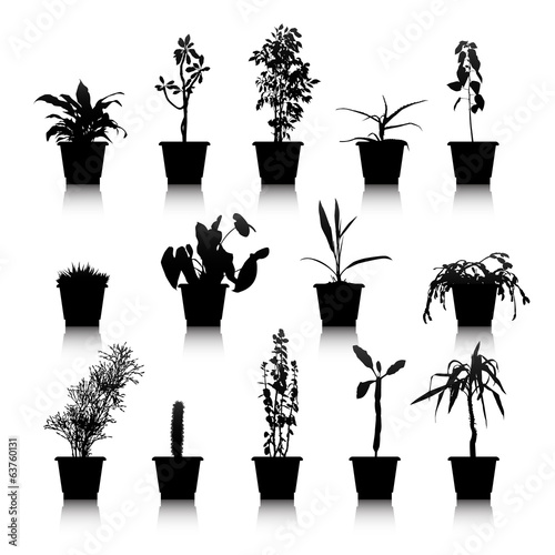 Set of silhouettes house plants