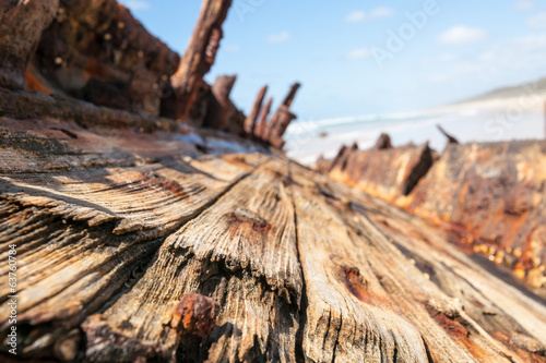 Teak deck remains from shipwreck of Maheno.