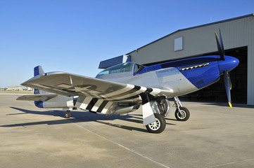wwii fighter plane P-51 Mustang