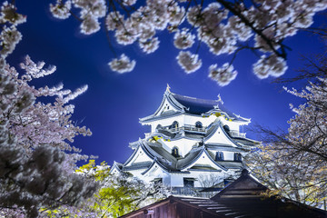 Hikone Castle, Hikone, Japan