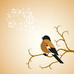 Winter bullfinch bird tweets on a tree branch