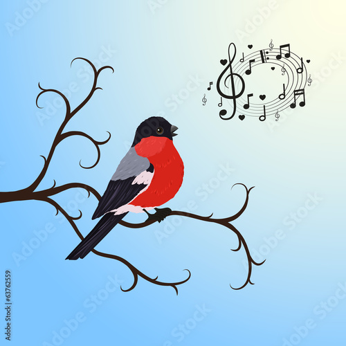 Singing bullfinch bird on a tree branch