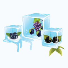 Blueberries in ice cubes