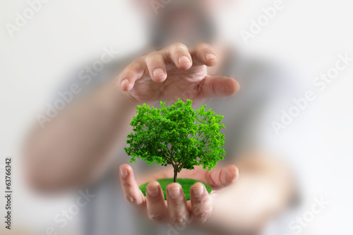 canvas print picture tree in hands