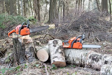chainsaw ready to work