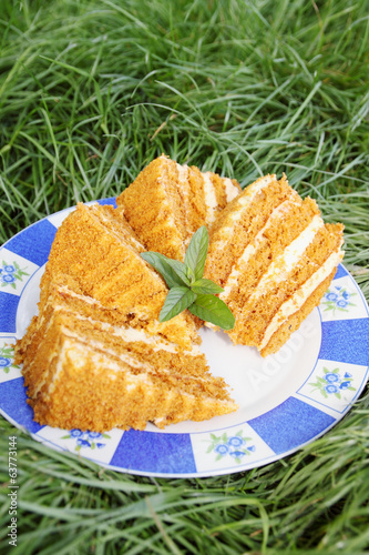 honey cake on grass