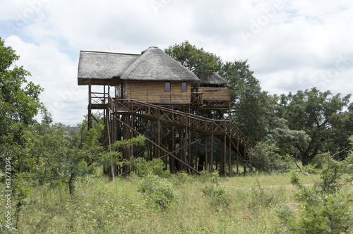 giant wooden house  on poles in  africa