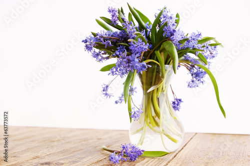 blue snowdrop in vase
