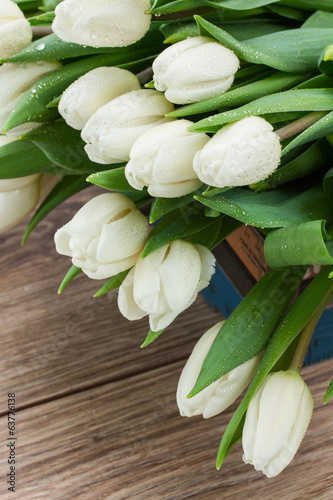 pile of white tulips
