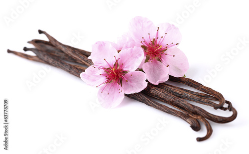 Vanilla pods with almond flowers