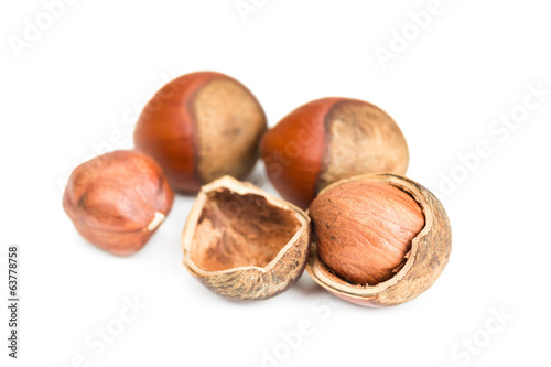 Hazelnuts in shell0