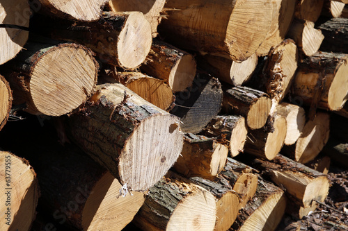 Logs and Timber