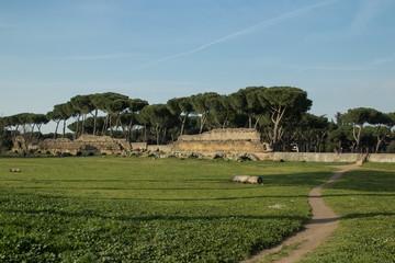 Roman aqueduct in San Policarpo Park, Rome