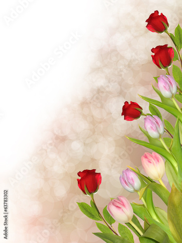 flowers tulips and roses