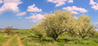 Parco Alta Murgia:paesggio primaverile. -(Puglia) ITALIA- -