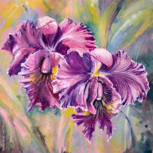 Orchid flowers.Watercolors