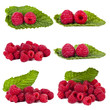 collection of raspberries isolated