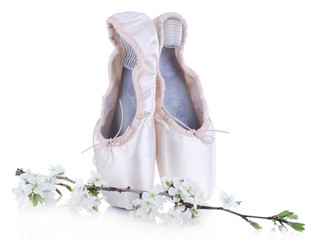 Ballet pointe shoes with blossoming branch isolated on white