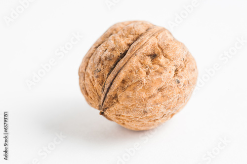 Walnut on white macro