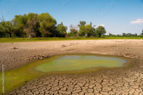 Fotobehang Droogte Polluted water and cracked soil during drought