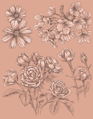 Detailed Sketchbook Hand Drawn Flower Set
