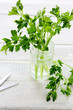 fresh parsley in a jar and scissors