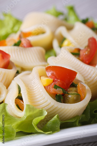 Fresh vegetable salad with pasta lumakoni vertical