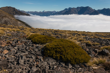 inversion in Fiordland National Park, New Zealand