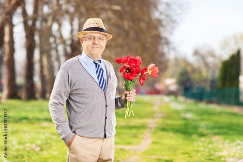 Senior male holding bunch of red tulips in park