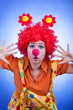 Clown woman on blue background studio shooting