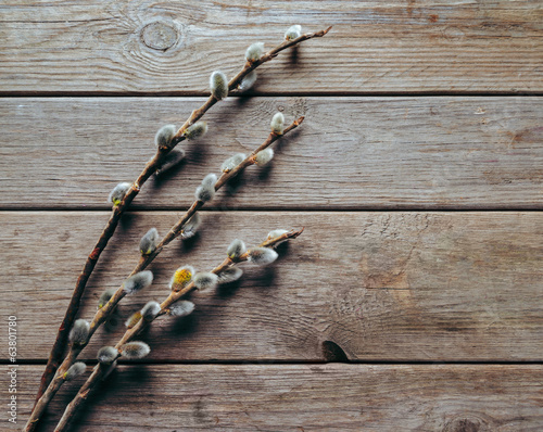 Willow branches on a wooden table