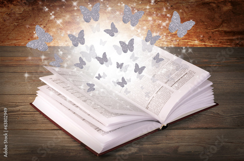 Open book with butterflies from paper