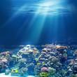 Leinwandbild Motiv Sea or ocean underwater coral reef
