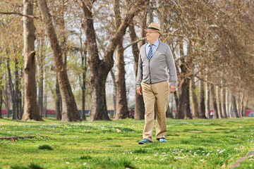 Senior gentleman walking in park